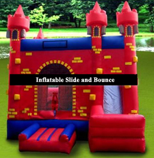 Buffalo Inflatable Castle Slide and Bounce House