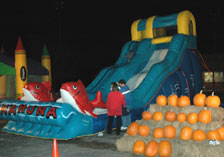 Buffalo Bounce House Slide